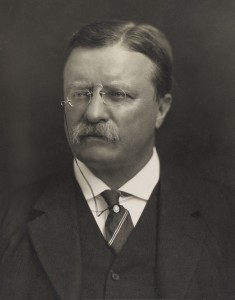 Theodore Roosevelt photo loc