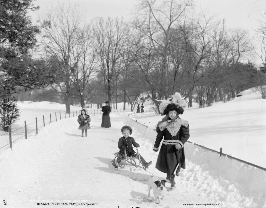 circa 1905 children with sleds in Central Park