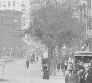 Trees lining Broadway 1908 and view center median with lighting