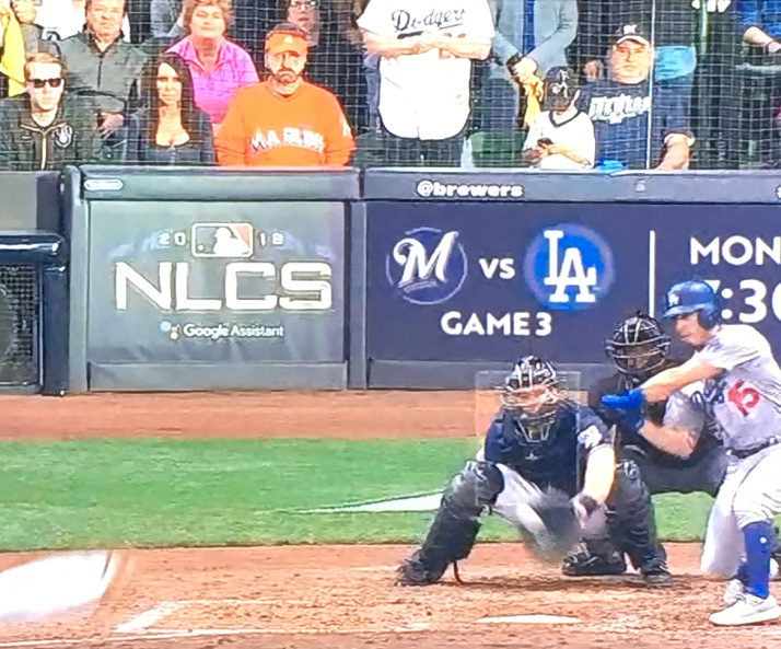woman sitting behind home plate in first row during brewers games rh stuffnobodycaresabout com home plate amy Front-Row Amy Williams Brewers