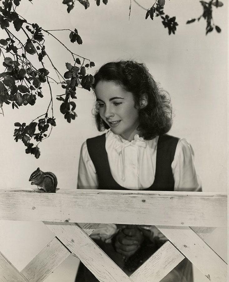 Classic Hollywood #74 – Elizabeth Taylor